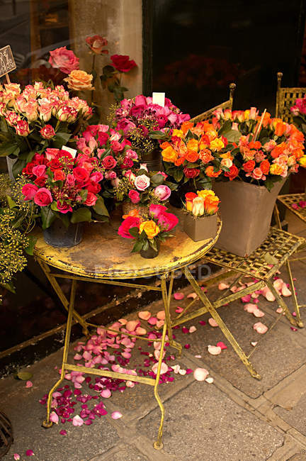 Rosen auf Tisch und Stuhl im Blumenladen — Stockfoto