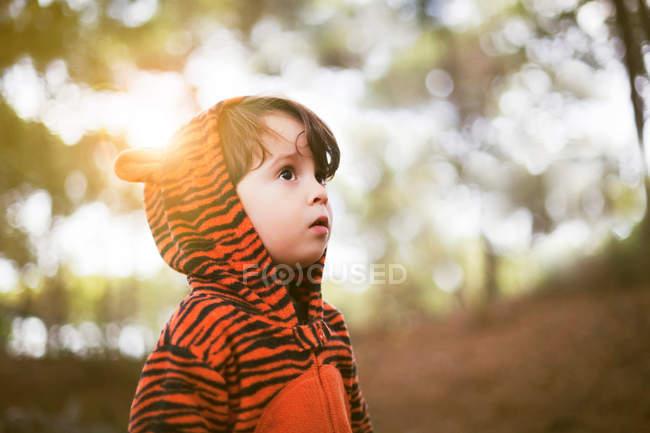 Retrato de un niño en traje de tigre solo en el bosque - foto de stock
