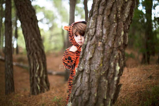 Masculina criança vestindo terno tigre escondido atrás da árvore — Fotografia de Stock