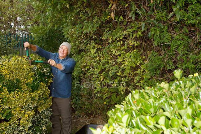 Mais velho homem aparar sebes no jardim — Fotografia de Stock