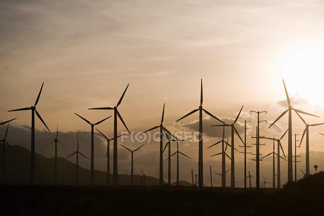 Turbines de vent sous un ciel coucher de soleil nuageux — Photo de stock