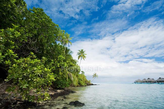 Vacanze tropicali — Foto stock