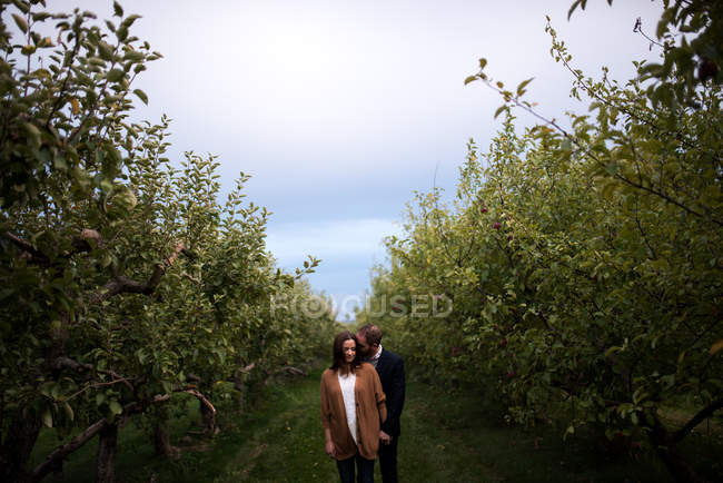 Couples adultes romantiques dans le verger au crépuscule — Photo de stock
