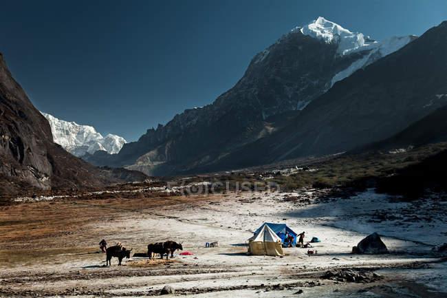Vista in lontananza di Thangsing, regione himalayana Kanchenjungs, Sikkim, India — Foto stock