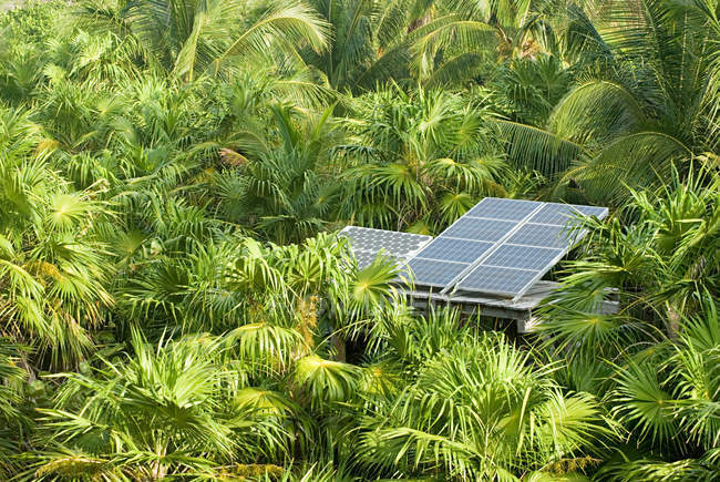 Solar energy panel surrounded by lush greenery — Stock Photo