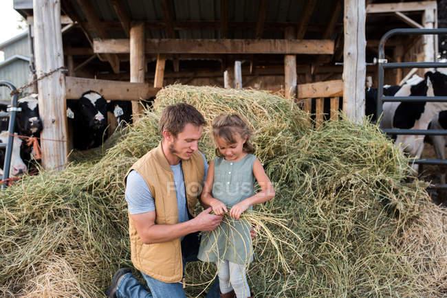 Vater und Tochter neben Kuhstall, Tochter hält Heu — Stockfoto