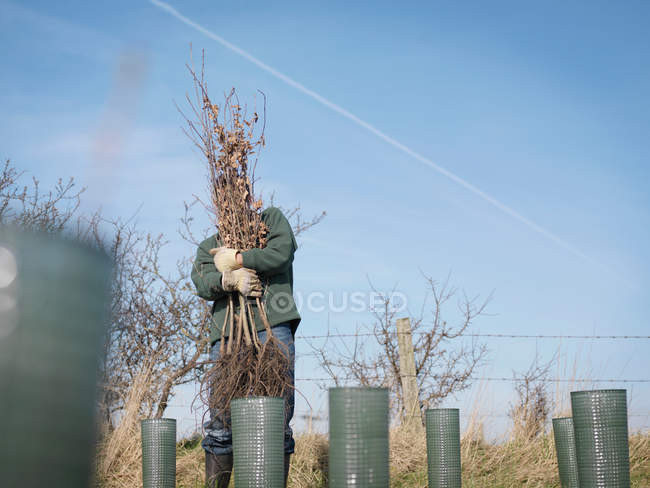 Front view of man struggling to hold trees in rural landscape — Stock Photo