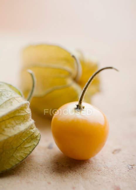 Close up shot of physalis fruit — Stock Photo