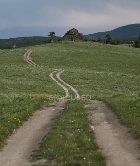 Сільська дорога в галузі — стокове фото