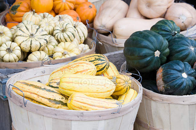 Various autumn seasonal vegetables in baskets — Stock Photo