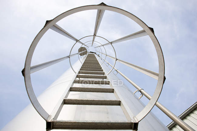 Ladder with circular fence — Stock Photo