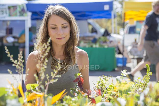 Mujer en el puesto del mercado mirando las plantas - foto de stock