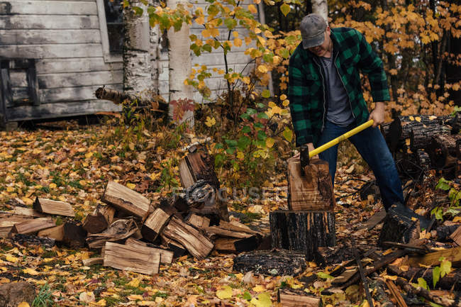 Reife Mann Holzstämme hacken im Herbst Wald, upstate New York, USA — Stockfoto