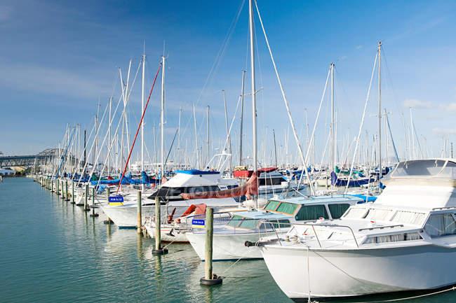 Observando vista de Westhaven Marina, Auckland - foto de stock