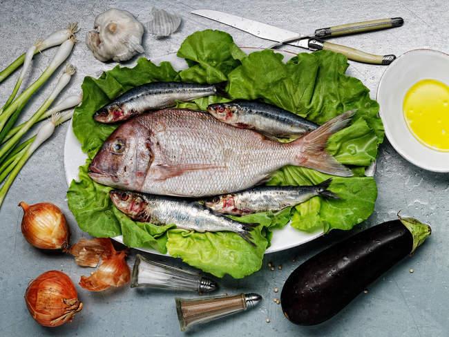 Roher Fisch und Gemüse — Stockfoto