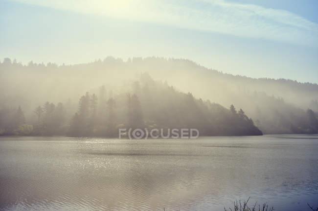 Freshwater lagoon in morning fog — Stock Photo