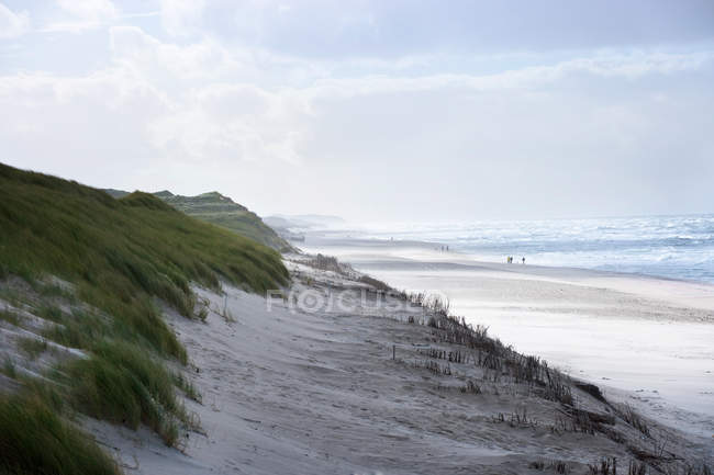 Sand dunes and beach of Sylt — Stock Photo