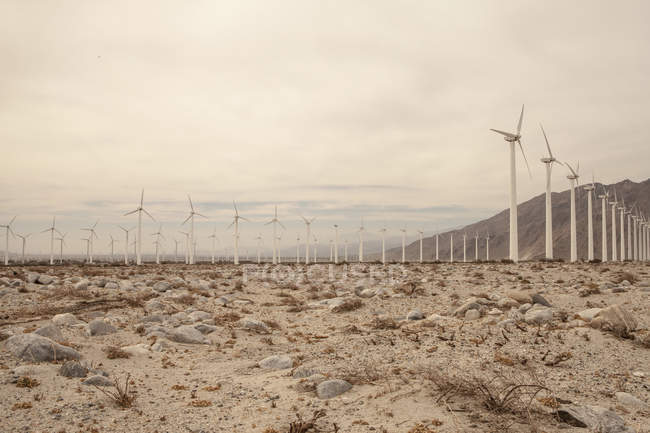 Ряды ветряных турбин в сухом ландшафте под облачным небом — стоковое фото