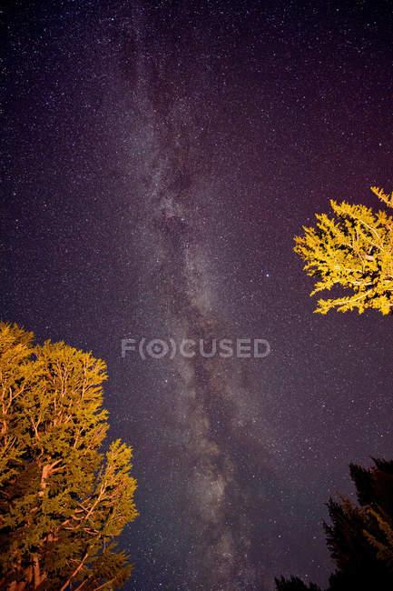 Ansicht der Milchstraße — Stockfoto