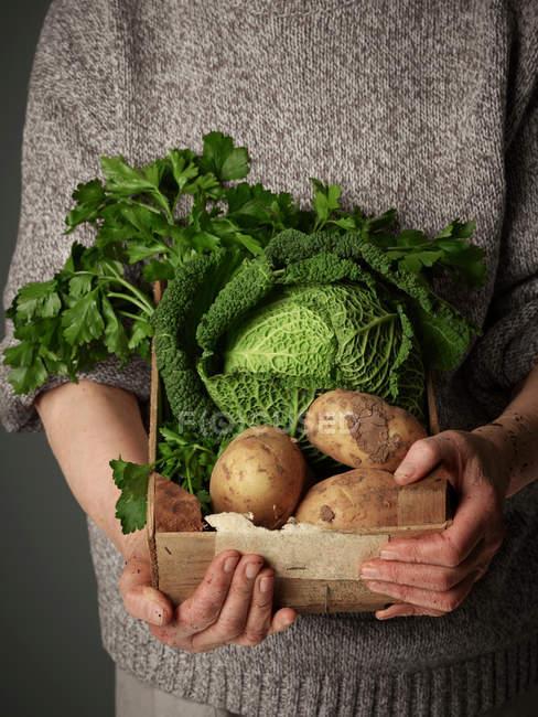 Tiro recortado de mujer sosteniendo caja de madera de verduras - foto de stock