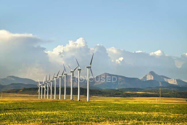 Turbinas eólicas em fileira — Fotografia de Stock