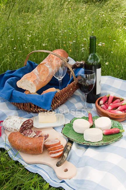 Französisches Picknick mit Baguette, Ziegenkäse, Wurst und Weinflasche auf Decke — Stockfoto