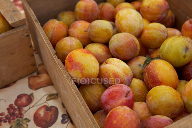 Crates of ripe plums — Stock Photo