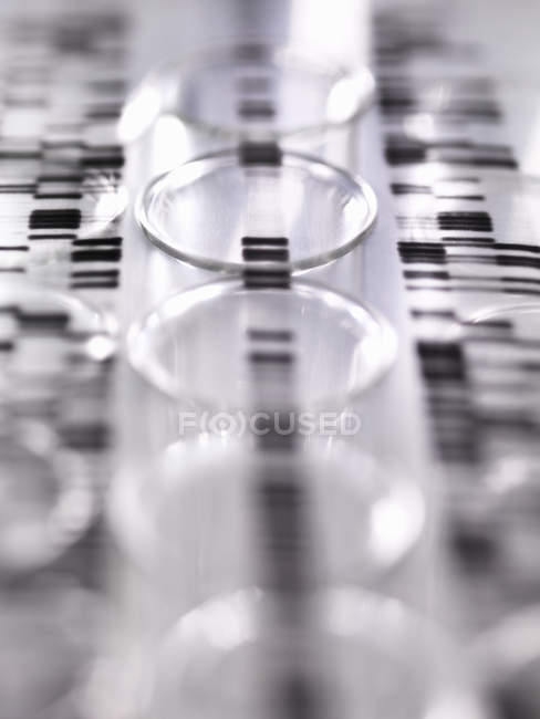 DNA autoradiogram gel illustrating genetic results laying on a row of test tubes in the laboratory — Stock Photo