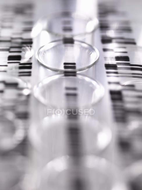 Autoradiogram ADN gel ilustrar resultados genéticos en una fila de tubos de ensayo en el laboratorio - foto de stock