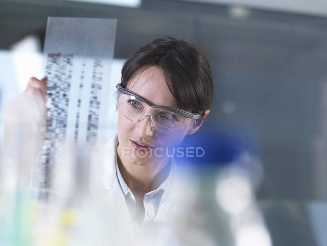 Researcher holding a DNA gel during a genetic experiment in a laboratory — Stock Photo