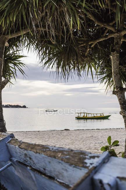 Vue sur la mer et les bateaux entre les arbres, Gili Meno, Lombok, Indonésie — Photo de stock