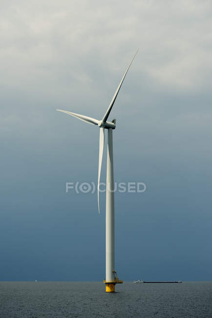 Turbina eólica marina, lago IJsselmeer, Espel, Flevopolder, Países Bajos - foto de stock