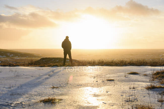 Rear view of man looking at view, Svinadalur, Iceland — Stock Photo