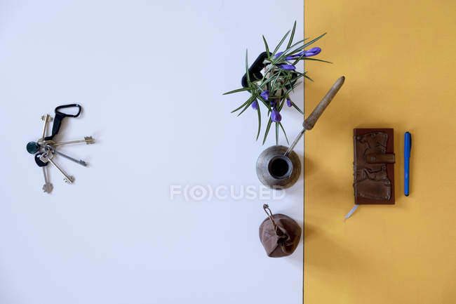 Top view of a bunch of keys flower pot and notebook — Stock Photo