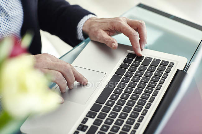 Hands of senior woman typing on laptop at desk — Stock Photo