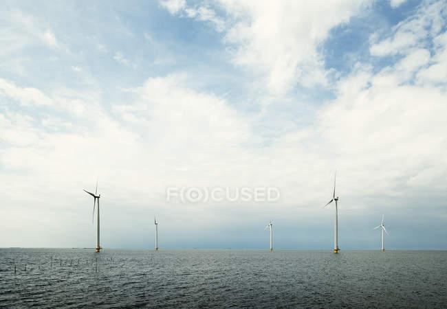 Parc éolien offshore, lac IJsselmeer, Espel, Flevopolder, Pays-Bas — Photo de stock