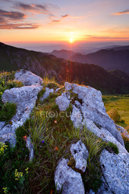Rocks and wildflowers at sunset, Bolshoy Thach Nature Park, Caucasian Mountains, Republic of Adygea, Russia — Stock Photo
