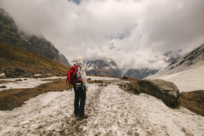 Woman, standing, looking at view,  rear view, ABC trek (Annapurna Base Camp trek), Nepal — Stock Photo