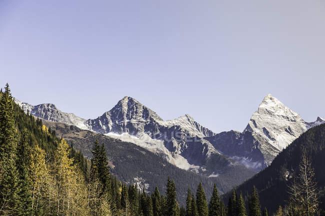 Канадські Скелясті гори, Золотий, Британська Колумбія, Канада — стокове фото