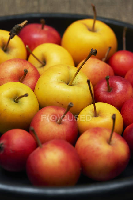 Plate with red and yellow apples — Stock Photo