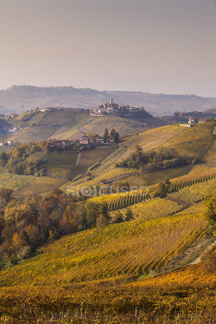 Paisagem com vinhas de outono e edifícios da aldeia — Fotografia de Stock