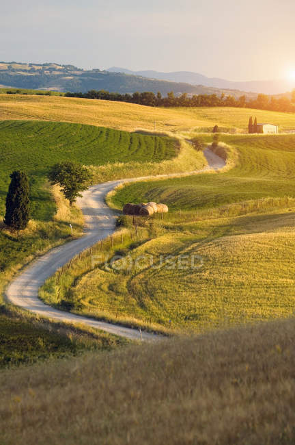 Rural landscape with dirt road and fields in sunlight — Stock Photo