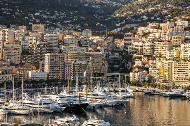View of marina with yachts and boats, Monte Carlo, Monaco — Stock Photo