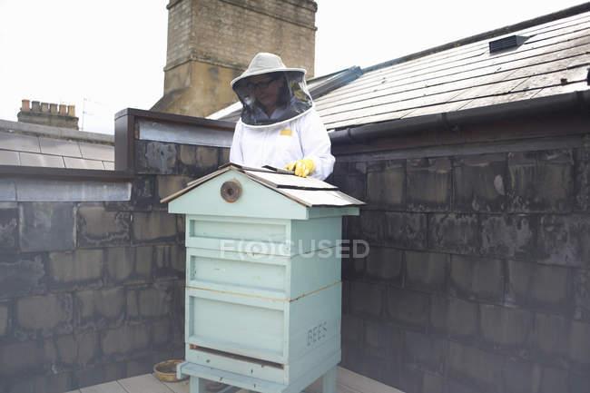 Apicultor con traje de abeja, preparándose para inspeccionar la colmena - foto de stock