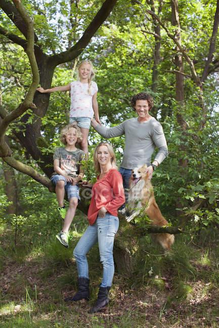 Famiglia in foresta arrampicata albero guardando la fotocamera sorridente — Foto stock