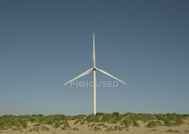 Вітряк на вершині дюни, з синього неба — стокове фото