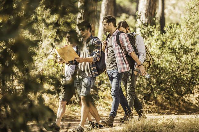 Quattro escursionisti maschi leggono la mappa mentre fanno escursioni nella foresta, Deer Park, Città del Capo, Sud Africa — Foto stock