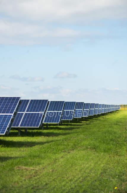 Солнечные панели на траве под голубым небом — стоковое фото