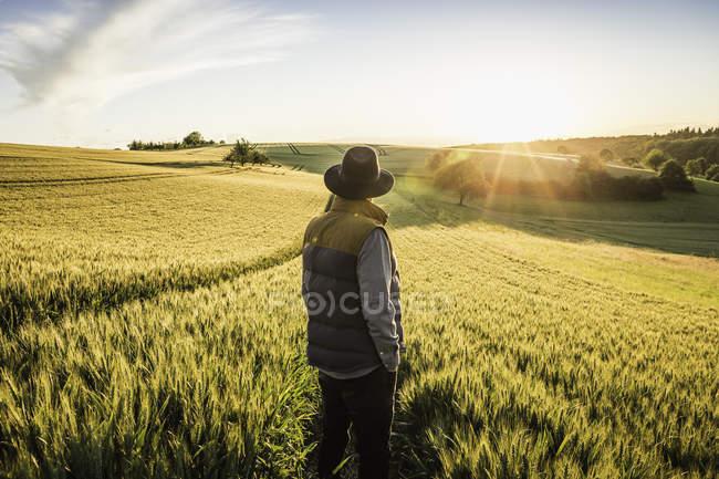 Вид сзади взрослого мужчины средних лет, стоящего в поле, Озил, Германия — стоковое фото