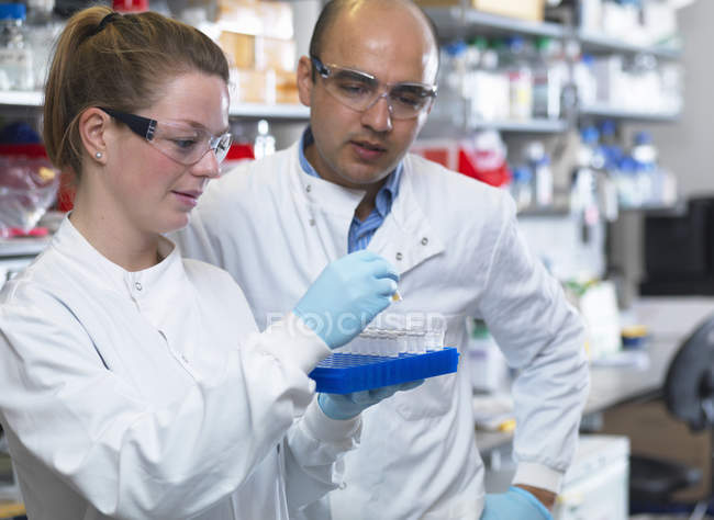 Scientists preparing to analyse samples from clinical trial — Stock Photo